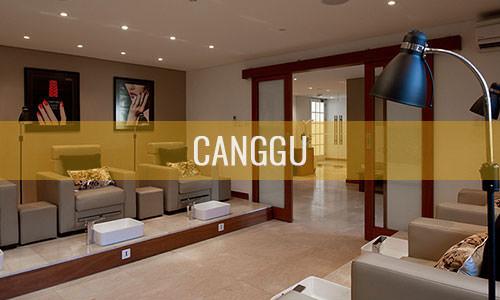 20150127-canggu