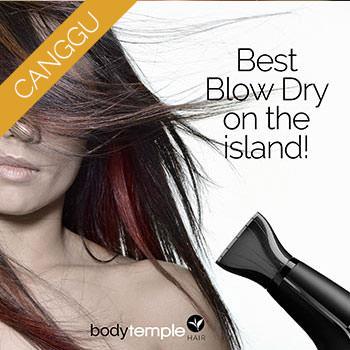 2010401-promo-blowdry-cover